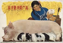 chinese farm